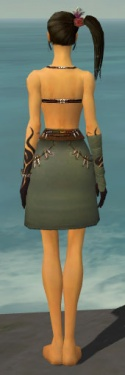 Ritualist Shing Jea Armor F gray arms legs back.jpg