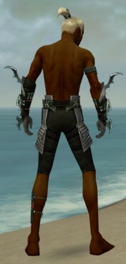 Assassin Elite Luxon Armor M gray arms legs back.jpg