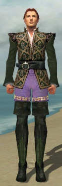 Mesmer Courtly Armor M gray chest feet front.jpg