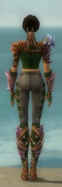 Ranger Drakescale Armor F dyed back.jpg