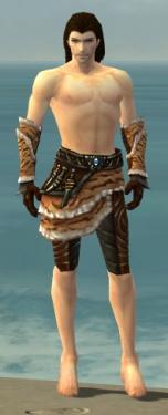 Ranger Vabbian Armor M gray arms legs front.jpg
