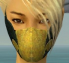 Assassin Seitung Armor F dyed head front.jpg