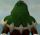 Dervish Norn Armor M dyed head back.jpg