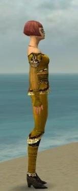 Mesmer Luxon Armor F dyed side.jpg