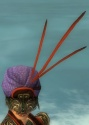 Ritualist Asuran Armor F dyed head front.jpg