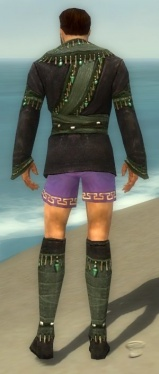 Mesmer Elite Luxon Armor M gray chest feet back.jpg