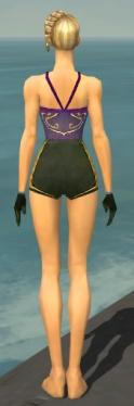 Mesmer Sunspear Armor F gray arms legs back.jpg