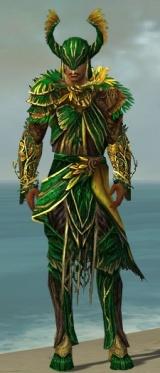 Disciple of Melandru M dyed front.jpg