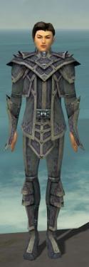 Elementalist Krytan Armor M gray front.jpg