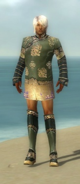 Mesmer Elite Canthan Armor M gray chest feet front.jpg