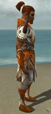 Paragon Norn Armor M dyed side.jpg