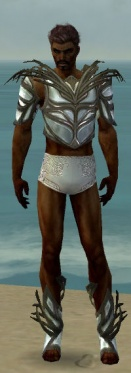 Paragon Primeval Armor M gray chest feet front.jpg