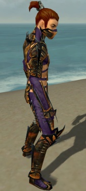 Assassin Elite Exotic Armor M dyed side.jpg