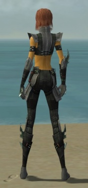 Assassin Luxon Armor F gray back.jpg