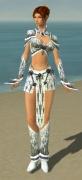 Elementalist Elite Iceforged Armor F gray front.jpg