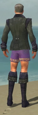 Mesmer Elite Elegant Armor M gray chest feet back.jpg