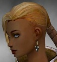 Monk Kurzick Armor F gray earrings.jpg