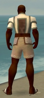 Monk Sacred Armor M gray chest feet back.jpg