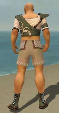 Monk Shing Jea Armor M gray chest feet back.jpg