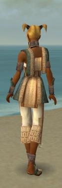 Monk Vabbian Armor F gray back.jpg