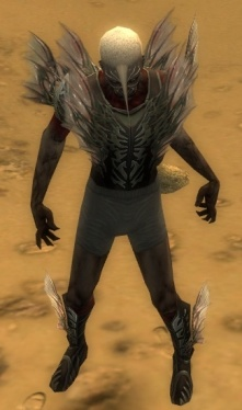 Necromancer Primeval Armor M gray chest feet front.jpg