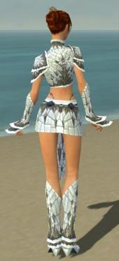 Elementalist Elite Iceforged Armor F gray back.jpg