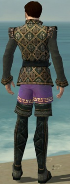 Mesmer Elite Noble Armor M gray chest feet back.jpg