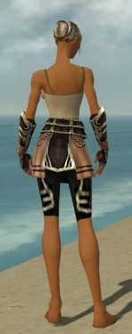 Warrior Ancient Armor F gray arms legs back.jpg