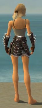 Warrior Norn Armor F gray arms legs back.jpg