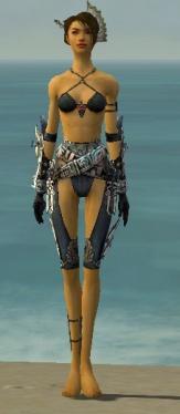 Assassin Asuran Armor F gray arms legs front.jpg