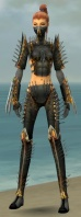 Assassin Exotic Armor F gray front.jpg