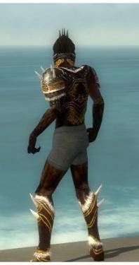 Necromancer Norn Armor M gray chest feet back.jpg
