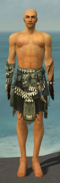 Ritualist Seitung Armor M gray arms legs front.jpg