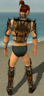 Assassin Elite Exotic Armor M gray chest feet back.jpg