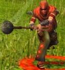 Luxon Warrior.jpg