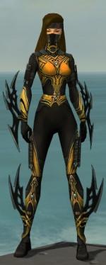 Assassin Vabbian Armor F dyed front.jpg