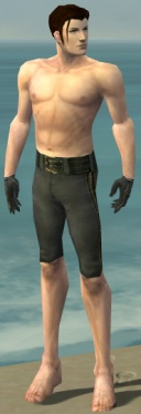 Mesmer Elite Noble Armor M gray arms legs front.jpg