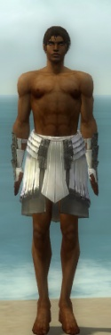 Paragon Ancient Armor M gray arms legs front.jpg