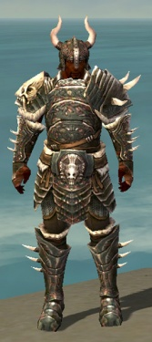 Warrior Norn Armor M gray front.jpg