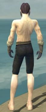 Elementalist Norn Armor M gray arms legs back.jpg