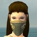 Ranger Shing Jea Armor F gray head front.jpg