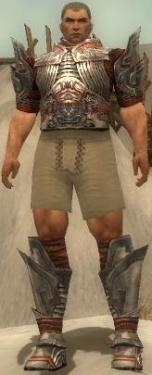 Warrior Asuran Armor M gray chest feet front.jpg