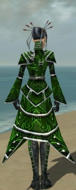 Necromancer Fanatic Armor F dyed back.jpg
