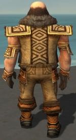 Ogden Stonehealer Armor Deldrimor Back.jpg