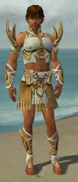 Paragon Elite Sunspear Armor M dyed front.jpg