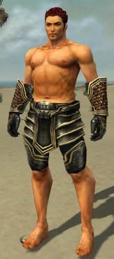 Warrior Kurzick Armor M gray arms legs front.jpg
