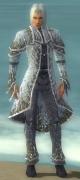 Elementalist Elite Iceforged Armor M gray front.jpg