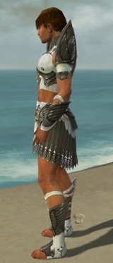 Paragon Elite Sunspear Armor M gray side.jpg