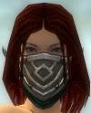 Ranger Elite Kurzick Armor F gray head front.jpg