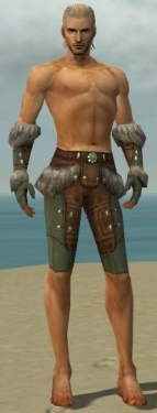 Ranger Fur-Lined Armor M gray arms legs front.jpg